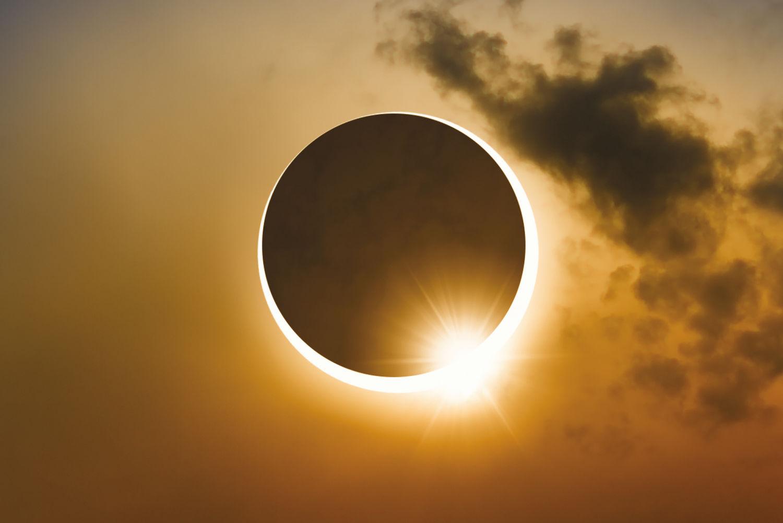 что увидели на солнце картинки плане