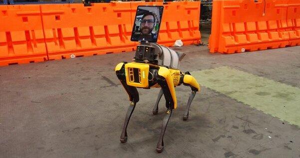 В Boston Dynamics создают робота, который поможет вборьбе сCOVID-19