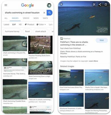 Google будет проверять достоверность фотографий впоиске