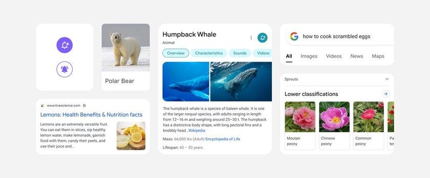 Google готовит редизайн поиска насмартфонах: красивее, но меньше информации наодном экране