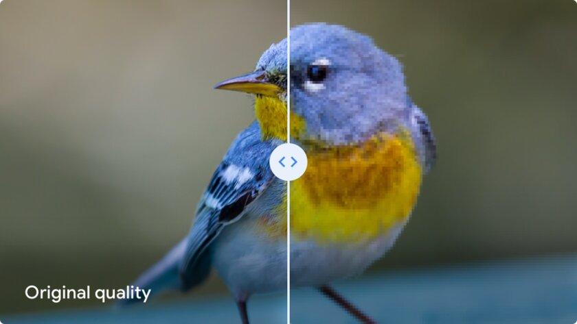 С отказом отбезлимитного хранилища Google решил, что «высокое качество» воблаке портит фото