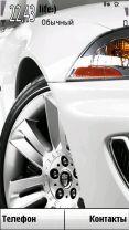 Jaguar by Plussa