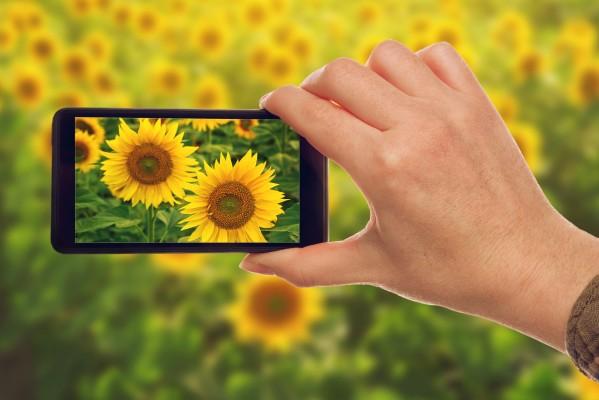 Лучшие камеры android смартфонов