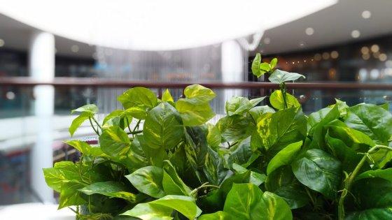 Обзор ASUS ZenFone 3 Zoom — Камеры. 51