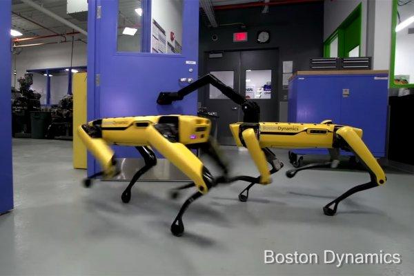 Boston Dynamics научила роботов открывать двери