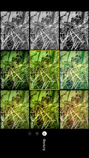 Обзор Neffos N1— неожиданно хорош — Камера. 3