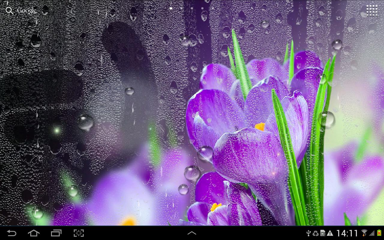 Живые обои на рабочий стол для windows 7 скачать бесплатно дождь
