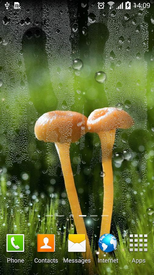Звуки каплей дождя скачать