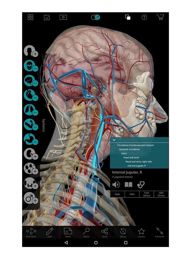 Human Anatomy Atlas 7403 Android