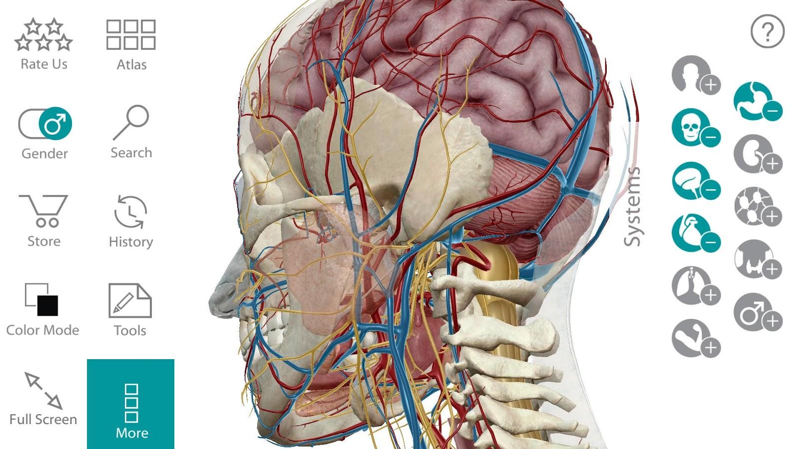 Книги по анатомии человека скачать на андроид