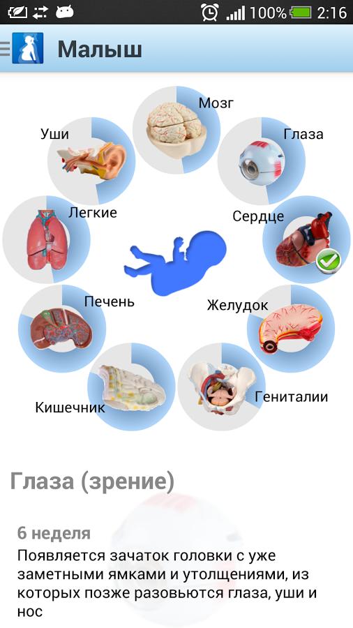 Скачать бесплатно на андроид приложение я беременна