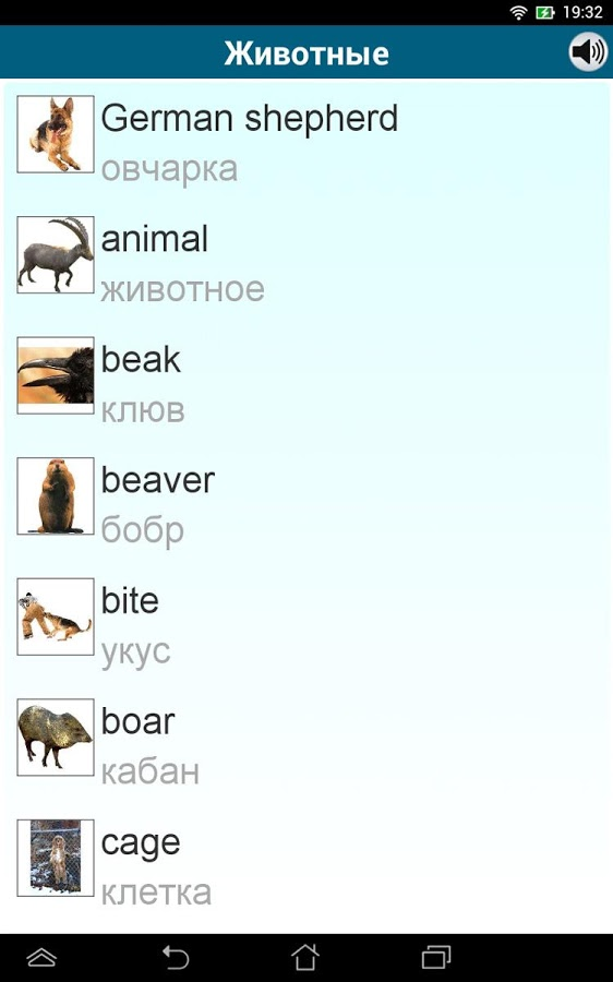 Языков languages