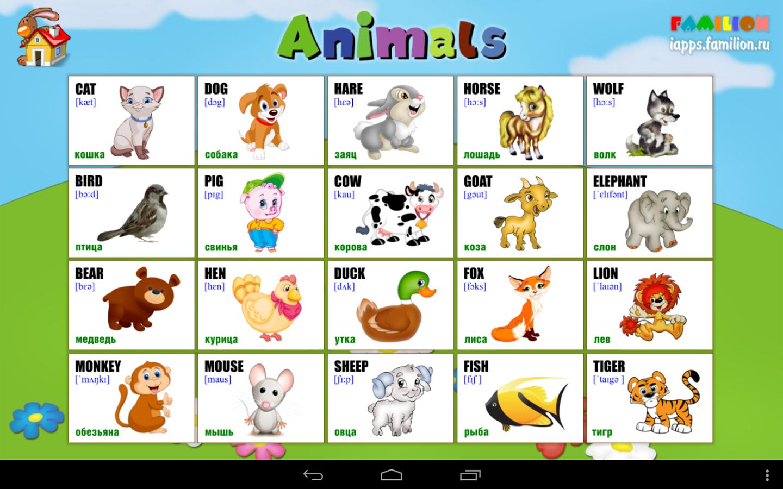 картинки по английскому языку для детей