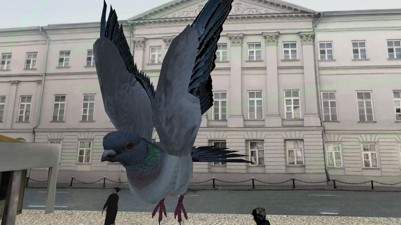 Скачать симулятор голубя