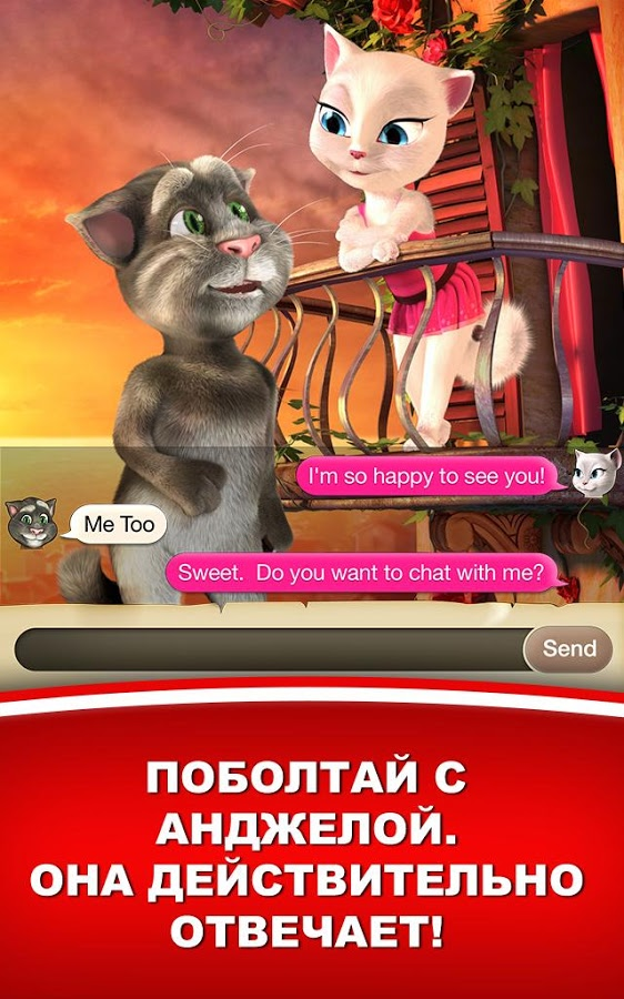 Кот любит анжелу