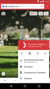 Opera Mini 31.0.2254.122029. Скриншот 4