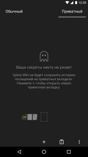 Opera Mini 25.0.2254.116879. Скриншот 9