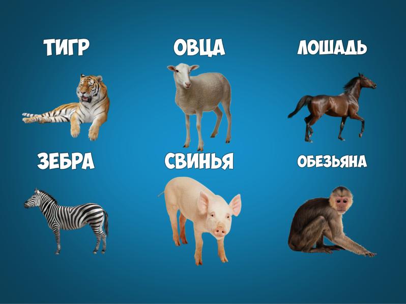 Блог Юрия Прокопенко | У девушки нет оргазма! Что делать?