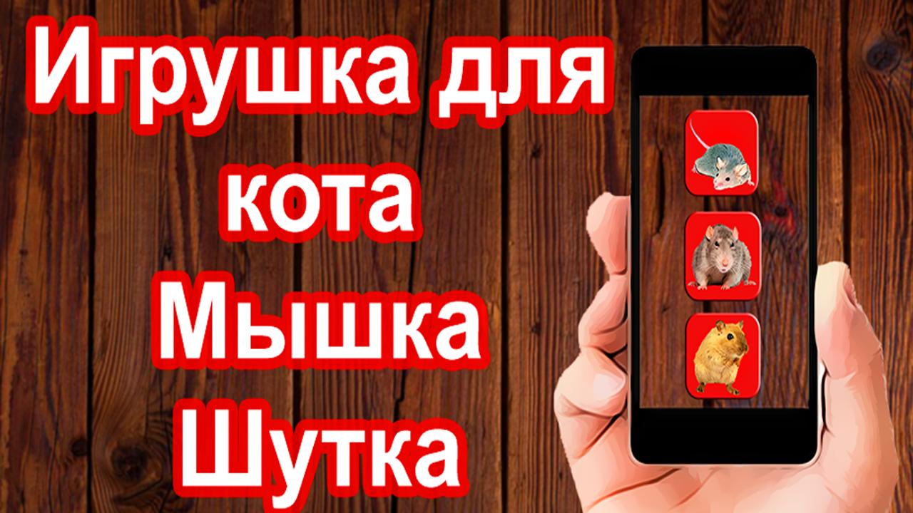 Приложения в Google Play – Игра для кошек