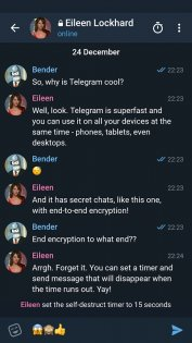 Telegram X 0.20.10.967-armeabi-v7a. Скриншот 4