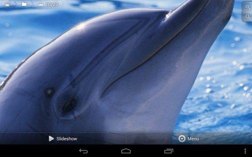 Фотогалерея 3D & HD 1.3.3. Скриншот 10