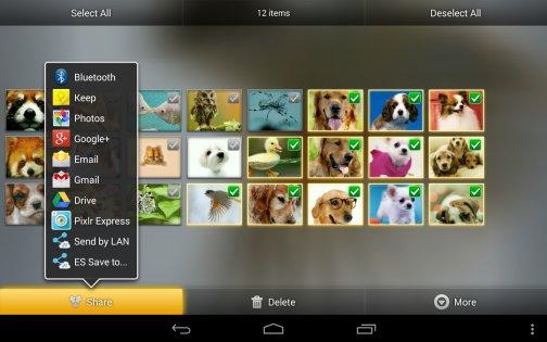 Фотогалерея 3D & HD 1.3.3. Скриншот 13